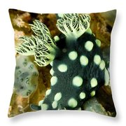 Closeup Of Nudibranch Nembrotha Throw Pillow