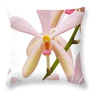Closeup Pink Orchid Throw Pillow