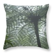 Cloud Forest Ceiling, Costa Rica Throw Pillow
