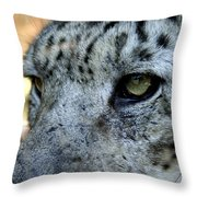 Clouded Leopard Face Throw Pillow