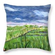 Cloudy Marsh Throw Pillow