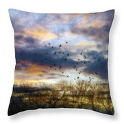 Cloudy Sunset With Bare Trees And Birds Flying Throw Pillow
