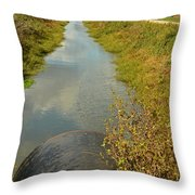 Cloudy Water Throw Pillow