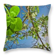 Clover And Sunflare 1 Throw Pillow by Amber Flowers