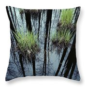 Clumps Of Grass In Water Reflecting Throw Pillow