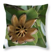 Clusia Major -  Autograph Tree Throw Pillow