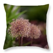 Cluster Of Beauty Throw Pillow