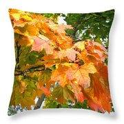 Cluster Of Color Throw Pillow