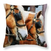 Clydesdale Closeup Throw Pillow