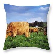 Co Antrim, Ireland Highland Cattle Throw Pillow