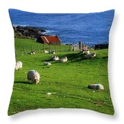 Co Cork, Beara Peninsula Throw Pillow