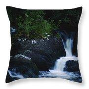 Co Cork, Ireland Heron Standing By A Throw Pillow