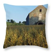 Co Derry, Limavady, Roe Valley Country Throw Pillow