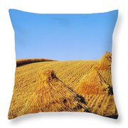 Co Down, Ireland Oats Throw Pillow