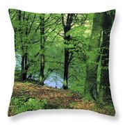 Co Kerry, Standing Stone On Clogher Throw Pillow