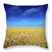 Co Louth,irelandwheat Field Throw Pillow