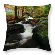 Co Wicklow, Ireland Waterfalll Near Throw Pillow