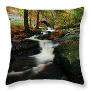 Co Wicklow, Ireland Waterfalll Near Throw Pillow