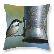 Coal Tit On Feeder Throw Pillow