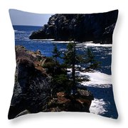 Coastal Maine Throw Pillow by Skip Willits