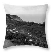 Coastal View Mist - Black And White Throw Pillow