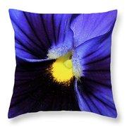 Cobalt Blue Pansy Throw Pillow