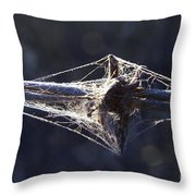 Cobwebs And Wire Throw Pillow