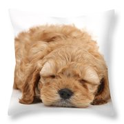 Cockapoo Pup Throw Pillow