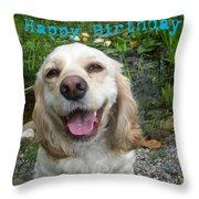 Cocker Spaniel Birthday Throw Pillow