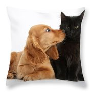 Cocker Spaniel Puppy And Maine Coon Throw Pillow