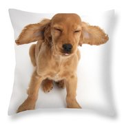 Cocker Spaniel Puppy Making A Face Throw Pillow