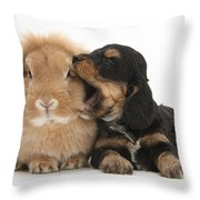 Cockerpoo Pup And Lionhead-lop Rabbit Throw Pillow