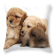 Cockerpoo Puppies And Rabbit Throw Pillow