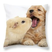 Cockerpoo Puppy And Guinea Pig Throw Pillow