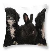 Cockerpoo Pups And Rabbit Throw Pillow