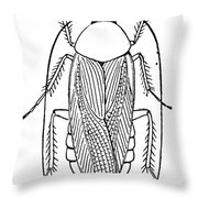 Cockroach Throw Pillow