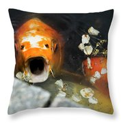 Cocky Catskills Koi Throw Pillow