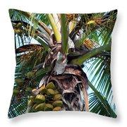 Coconut Palm Inflorescence Throw Pillow by Karon Melillo DeVega