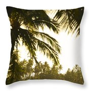 Coconut Palm Trees On The Coast Throw Pillow