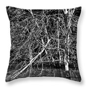 Coexistance Throw Pillow