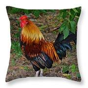 Cogg-a-doodle Doo Throw Pillow
