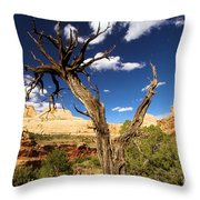 Cohab Canyon At Capitol Reef Throw Pillow