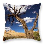 Cohab Canyon Overlook Throw Pillow