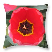 Coherence Throw Pillow