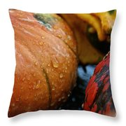Cold And Wet Throw Pillow