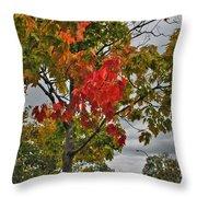 Cold Autumn Breeze  Throw Pillow