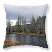 Cold Day On The Nemah River Throw Pillow