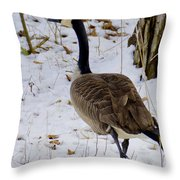 Cold Footed Goose On The Loose Throw Pillow