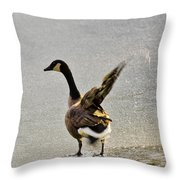 Cold Goose Bath Throw Pillow