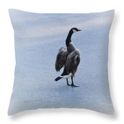 Cold Goose Dreams Throw Pillow